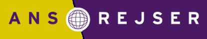 Ansrejser.dk logo