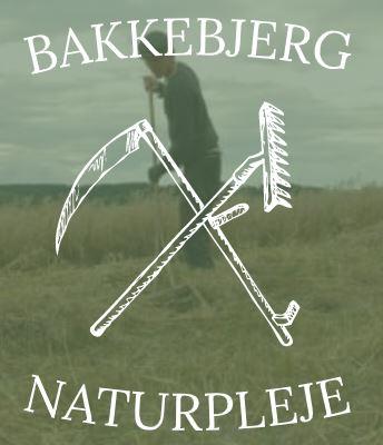 Bakkebjerg Naturpleje